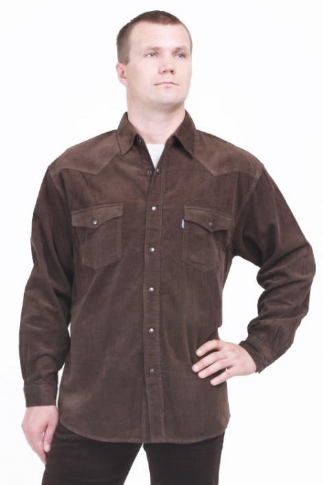 рубашка вельветовая монтана caf Montana рубашки 542 Caf-Velvet