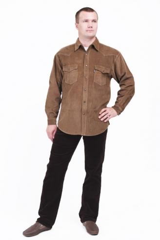 Джинсы и рубашка Монтана Grn+D.Brown